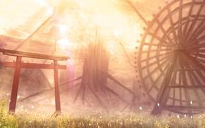 Picture nature, Ferris wheel, torii