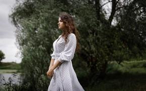 Picture girl, dress, curls, Eugene Sukhorukov