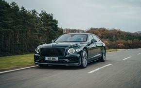 Picture road, trees, speed, Bentley, Flying Spur, 2020, V8, 2021, Flying Spur V8