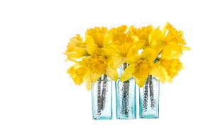 Picture glass, flowers, bouquet, yellow, white background, daffodils, bottle