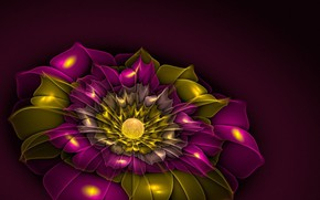 Picture flower, abstraction
