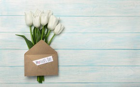 Picture flowers, bouquet, tulips, the envelope, white tulips