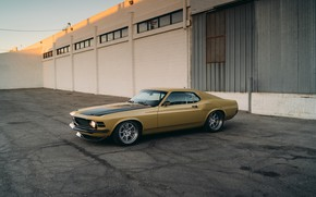 Picture machine, lights, Mustang, Ford, drives, RDJ Boss 302, SpeedKore