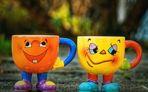 Picture mugs, a couple, funny