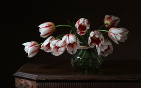 Picture flowers, retro, the dark background, table, bouquet, Bank, tulips, vase, white, still life, red, striped