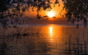 Picture sunset, the evening, Thailand