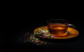 Picture leaves, flowers, background, black, tea, Cup, saucer