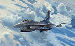 Picture fighter, Denmark, Lockheed Martin, F-16D Fighting Falcon, Lockheed Martin F-16D Tigermeet