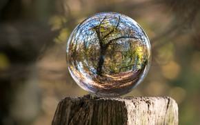 Picture NATURE, SPHERE, GLASS, BALL, REFLECTION, LENS