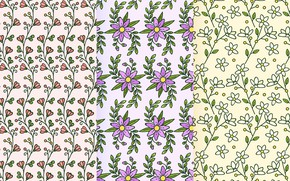 Picture flowers, pattern, Leaves, Collection