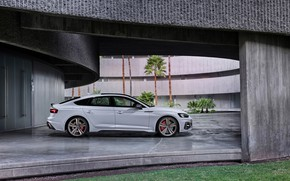 Picture Audi, side view, RS5, Sportback, RS 5, 2020