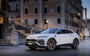 Picture Lamborghini, Rome, Urus, Urus, lamborghini urus 2019 rome