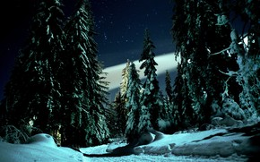 Picture winter, road, snow, trees, landscape, night, nature, stars, ate