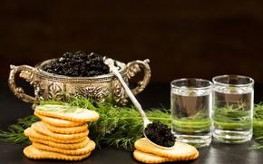 Picture dill, vodka, crackers, caviar