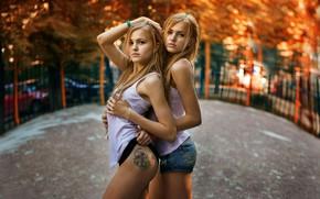 Picture summer, girls, Blondie