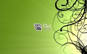 Picture Line, Linux, Linux Mint, Linux mint, LINUX, Black lines