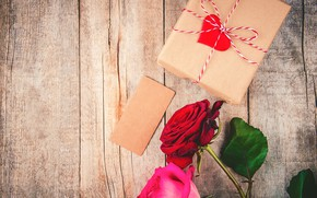 Picture gift, roses, heart
