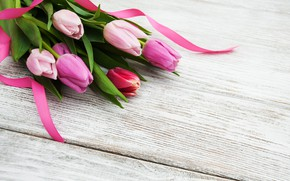 Picture flowers, flowers, spring, bouquet, purple, tulips, tulips, pink, colorful
