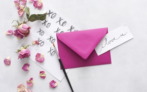 Picture letter, rose, Love, petals, the envelope, blooms, envelope