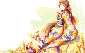 Picture girl, background, white background, red, sitting, yukata, ears, Spice and Wolf, Holo, Spice And Wolf