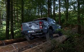 Picture forest, grey, Ford, back, Raptor, pickup, logs, Ranger, 2019