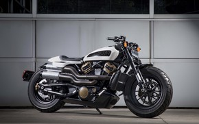 Picture concept, motorcycle, Harley Davidson, bike
