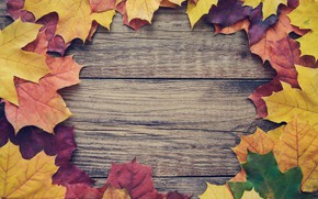 Picture autumn, leaves, background, Board, colorful, maple, wood, autumn, leaves, frame, maple