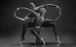 Picture line, dance, art, grace, Infinity, creativity, ballet, infinity, FOX3D ENTERTAINMENT