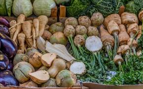 Picture roots, vegetables, market