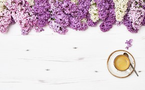 Picture flowers, flowers, lilac, romantic, coffee cup, lilac, a Cup of coffee