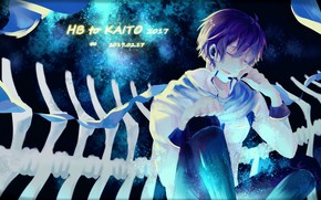 Picture guy, Vocaloid, Vocaloid, Kaito