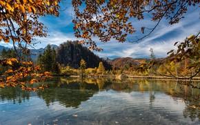 Picture autumn, trees, landscape, mountains, branches, nature, lake, hills, Austria, Almsee, Else