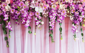 Picture flowers, background, roses, pink, buds, pink, flowers, purple, roses, bud