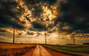 Picture road, field, windmills