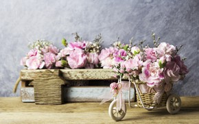 Picture flowers, petals, pink, vintage, wood, pink, flowers, beautiful, romantic