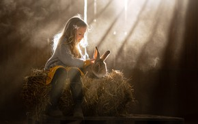Picture rays, rabbit, hay, girl, friends
