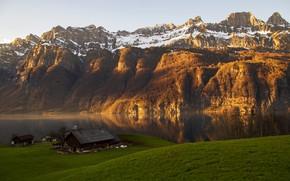 Picture grass, trees, mountains, lake, stones, rocks, shore, Switzerland, Alps, houses, Glarus