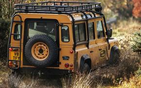 Picture dirt, SUV, the trunk, Land Rover, Defender, V8, spare wheel, 5.0 L., 2021, Works V8 …