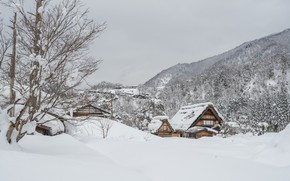 Picture winter, snow, trees, landscape, winter, house, hut, landscape, nature, beautiful, winter, snow, cottage