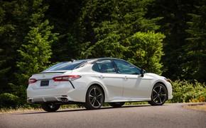 Picture white, trees, Toyota, sedan, 2018, Camry, XSE