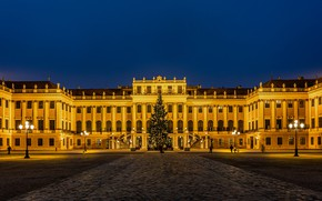 Picture the sky, lights, people, new year, the evening, Austria, area, lights, tree, Palace, Vienna, Schönbrunn …