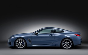 Picture background, coupe, BMW, profile, Coupe, 2018, gray-blue, 8-Series, pale blue, M850i xDrive, Eight, G15