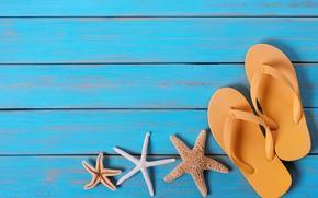 Picture background, starfish, Slates