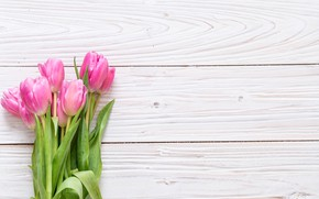 Picture flowers, background, pink, bouquet, tulips