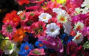 Wallpaper artificial flowers, flowers, Mamala ©, bright