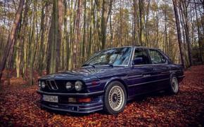 Picture BMW, E28, ALPINA, 1985, B9/3.5