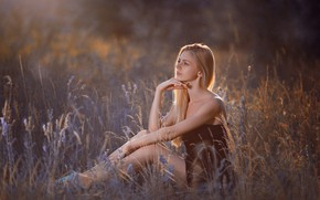 Picture field, summer, look, girl, pose, blonde