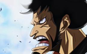 Picture One Piece, war, anime, samurai, hero, asian, manga, oriental, asiatic, bushido, japonese, Wano