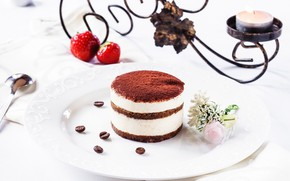 Picture chocolate, candle, strawberry, tiramisu