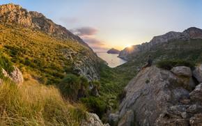 Picture sea, landscape, sunset, mountains, nature, rocks, vegetation, Bay